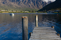Bread for birds (Kalabird) Tags: new lake mountains zealand southisland otago frankton lakewakitipu