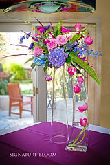 Floral Designer Los Gatos, Tulip Arrangement (Signature Bloom) Tags: pictures flowers blue wedding decorations orchid flower floral rose design purple designer unique events sanjose images reception anemone tulip mauve designs florist vendor siliconvalley hydrangea weddings bridal decor peninsula southbay ideas delphinium weddingflowers weddingphotos arrangements hotpink sanjoseca losgatosca florists specialevents centerpieces weddingideas bluewedding weddingdecorations dendrobiumorchid dramaticflowers floraldesigner flowerdesign 95121 95033 weddingflorist weddingfloral weddingvendor flowersforwedding signaturebloom losgatosflowers wwwsignaturebloomcom losgatosweddingflorist bridalflorist losgatosflorist weddingfloristlosgatosca mauvewedding monicakau