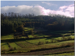 Galician countryside (Rodion Quidam (OFF for a while, this is awful)) Tags: wood light sky cloud tree verde green luz field countryside hall cottage galicia bosque cielo crop rbol campo sunbeam nube meis countryhouse casadecampo cultivo campia pazo salns