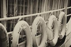 The Star Ferry Co  Ltd. (XavierParis) Tags: china sea blackandwhite bw mer white blancoynegro blanco ferry hongkong boat mar nikon asia noir barco noiretblanc negro nb asie xavier bateau lifebuoy xavi blanc chine salvavidas iberica bouée d700 xavierhernandez xyber75 xavierhernandeziberica