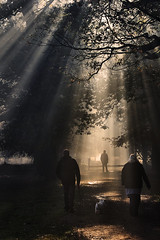 Walking the Dog II (Chris Beesley) Tags: morning autumn dog sun sunshine misty walking stroll sunbeams dunham massey 55300mm pentaxk5