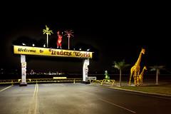 Welcome to Traders World (metroblossom) Tags: street ohio night dark dinosaur entrance fake palmtree giraffe tyrannosaurusrex img4446 welcometotradersworld