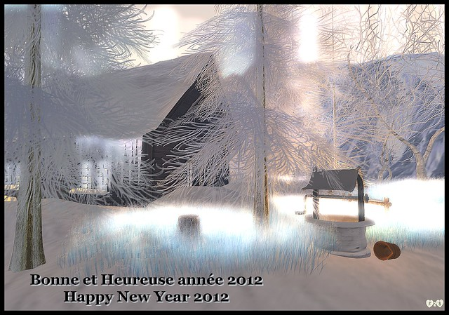 BONNE ANNEE 2012 - HAPPY NEW YEAR 2012