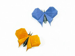 Butterfly (Al3bbasi.) Tags: butterfly insect origami al3bbasi