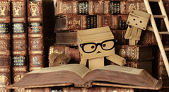 'The more that you read, the more things you will know. The more that you learn, the more places you'll go.' (.OhSoBoHo) Tags: cute love nerd japan canon toy toys japanese reading glasses robot interesting geek sweet library manga 100mm read kawaii wee pearl ladder drseuss educate 2012 oldbooks yotsuba danbo geekchic amazoncojp antiquebooks vintagebooks cardboardrobot revoltech creativetabletop canoneos40d danboard  thiswaseasy danbolove january2012 ohsoboho danbophotography homemadelibrary spottinyted danboreading geekydanbo 13booksarrangedaroundthedanbosandthebirdcageladderthatipickedupinthesupermarketisnowalibraryladder theglassesareoffacheapgeekyinspiredchainturnedintodanbogeekchicusinganelasticband danbogeekchic