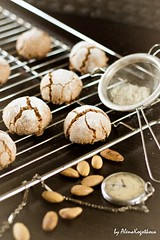 Amaretti08small (AlenaKogotkova) Tags: cookies breakfast baking italian almonds biscuits baked amaretti wirerack