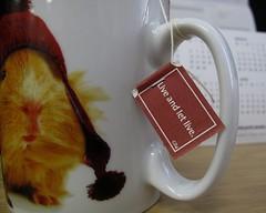 Day 18 18.01.12 (deboraborialis) Tags: work guineapig desk mug 365 liveandletlive teatag