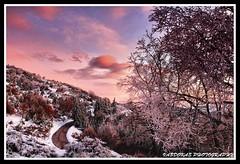 Evening Winter landscape (Vasdokas) Tags: mountain snow colors clouds landscape greece vasdokas