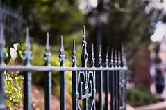Bent - Explore (Light Echoes) Tags: fall fence orlando nikon florida disneyworld wdw waltdisneyworld magickingdom hauntedmansion fantasyland 2011 d90 fencefriday