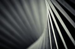 (koeb) Tags: abstract skulptur mainz lebenskraft