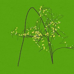 A (woodleywonderworks) Tags: finger letter organic alphabet draw shape organism a arttree artree img01031