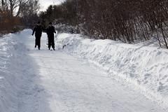 Ovanligt möte (reboot81) Tags: is vinter natur transport v snö sn väg skidor snš všg artistiskt