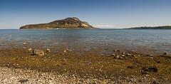Holy Island (Joe Dunckley) Tags: uk sea landscape scotland highlands beaches arran holyisland firthofclyde