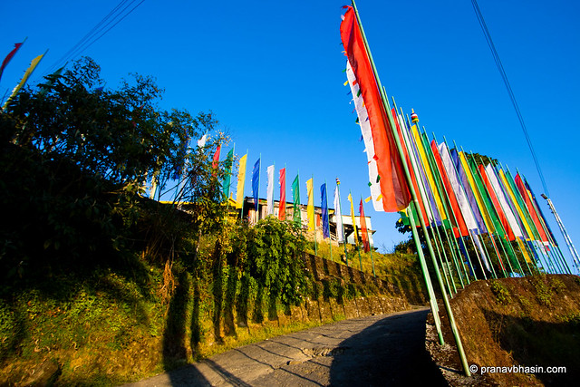 Flags Lined On Way To Premayangtse Monastery