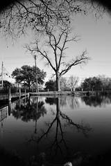 DSC_0132 copy (JosephD.Maldonado) Tags: reflection nikon balckandwhite sanmarcos 1855 nikkor texasstate vinyetting texasstateunversity d3100