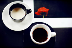 straight and simple (redflowered) Tags: red two white black flower cup coffee contrast milk opposite geometry poppy straight simple