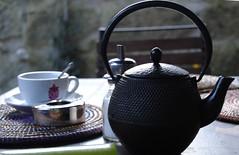 Winter Tea (Telma Parada) Tags: winter tea inverno frio ch rotadoch