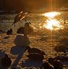 Enten und Schwäne im Gegenlicht (Andy von der Wurm) Tags: winter lake nature birds animals fauna backlight germany tiere pond europa europe seagull ducks swans alemania nrw moewe enten vögel teich möwe schwan allemagne soe waterbirds schwaene gegenlicht voegel wasservögel schwäne cubism winterlich coth winterly topshots wasservoegel geilenkirchen bej golddragon natureplus hobbyphotograph mywinners abigfave anawesomeshot diamondclassphotographer flickrdiamond kreisheinsberg theperfectphotographer platinumfoto goldstaraward spiritofphotography wurmauenpark damniwishidtakenthat dragondaggerphoto ringexcellence andreasfucke