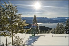 Winterstimmung im Frost (BM-Licht) Tags: schnee sun mountain lake snow mountains tree berg germany bayern deutschland bavaria see nikon wasser frost andrea des berge waters bild bume walchensee fichte tanne kochel sturm orkan klte urfeld kesselberg jochberg monats d7000 kesselberghhe tourentipp tourentippde