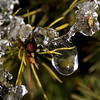 ice , explored! ( #268 ) (bugman11) Tags: winter snow macro ice nature water canon nederland thenetherlands wow1 wow2 flickraward platinumheartaward mygearandme mygearandmepremium allnaturesparadise vigilantphotographersunite