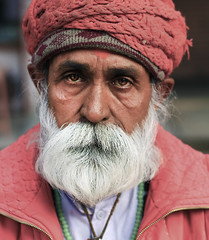 Mr. India ---> And a story. (Brock Whittaker Photography) Tags: red portrait india face beard photography eyes flickr mr indian fortune moustache portraiture brock indians fortuneteller jaipur rajasthan teller whittaker
