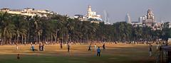 Weekend eve, cricketers, Mumbai (tomastamos) Tags: city travel sunset sport evening weekend contemporary cricket bombay maharashtra mumbai metropolitan cricketers weekendeve