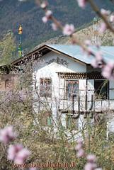 2014-03-26-Thimpu-18