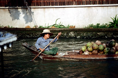 19-144 (ndpa / s. lundeen, archivist) Tags: people woman color film water hat 35mm thailand boat canal bangkok nick paddle cargo canals thai oar watersedge produce 1970s 1972 paddling coconuts 19 1973 strawhat klong dewolf khlong klongs nickdewolf photographbynickdewolf khlongs reel19