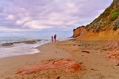 Melbourne Photographer At the Beach (DSC_5586) (fatima_suljagic) Tags: beach fineart photographers australia melbourne australianphotographers fineartprints australianbeaches australiannature nikond800 melbournephotography photographermelbourne fatimasuljagicmelbourne