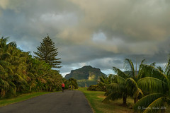 Cycling on Lord Howe Island (NettyA) Tags: road trees sunset water clouds cycling cyclists mood dramatic australia palm bicycles nsw day7 unescoworldheritage atmospheric lordhoweisland 2016 lhi mtlidgbird janetteasche lordhoweforclimate