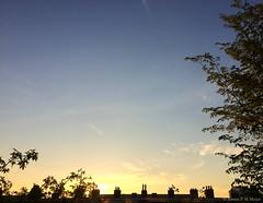 06:29 06.05.16 (jpmm) Tags: amsterdam clouds sunrise wolken contrails cirrus zuid altocumulus 2016 condenssporen