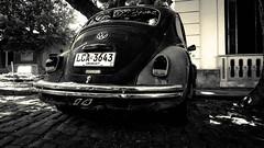 Beetle (Fran Caparros) Tags: world auto old city white black heritage car del america uruguay day south beetle tranquility dia colonia sacramento escarabajo automovil sudamerica quartier tranquilidad patrimonio empedrado