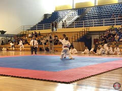 stefanou_15_5_2016_knockdown_68