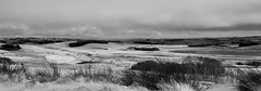 Let it snow! (Laura donothey) Tags: blackandwhite snow landscape photography nationalpark northumberland northeast