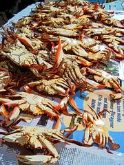 How we prepare the table (AbundantSoul / Ron Stasko) Tags: blue food art print photography corn louisiana fine culture lifestyle crab potato garlic prints onion boiled cajun crabbing crabboil giclee onthecob crabbin abundantsoul ronstasko