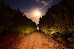 Postales nocturnas... (Ttys...) Tags: paisajes art rural noche photo nikon pueblo colores cielo estrellas campo nocturnas diciembre nocturnos tiempo tripode exposicin 2011 d7000 pipinas blinkagain