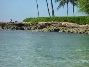 Hawaii2011 8