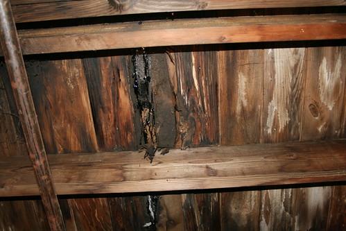 Machine room ceiling leaking roofing tar