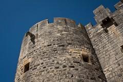 Aigues-Mortes (the.flea) Tags: stone geotagged raw pierre flea gargouille gard remparts aiguesmortes piedra theflea gorgoyle 2485 canonef2485mmf3545usm geo:lat=43564566 geo:lon=4194002