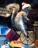 Bergdorf Goodman Holiday Window Display, New York City (jag9889) Tags: christmas city nyc holiday ny newyork window fashion store squirrel display manhattan tricycle front clothes midtown mens borough frock department bergdorf bergdorfgoodman goodman 5avenue 58street 2011 y2011 jag9889