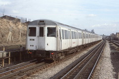London Transport . Metropolitan  Line . A60 Stock . 5111 . Dollis Hill , London . 01st-March-1979 . (AndrewHA's) Tags: electric train railway emu londonunderground londontransport cravens dollishill 5111 multipleunit a60stock