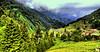 Ayder Yaylası - RİZE... (Ozcan MALKOCER) Tags: cloud tree green forest landscape kisses hdr rize xxxxxxxx 18135mm ayderyaylası çamlıhemşin doğukaradeniz canoneos7d 20110712 002hdrf