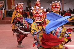 tibetan dances (rongpuk) Tags: people india mountains festival monastery monks tibetan himalaya tak ladakh gompa dances thok