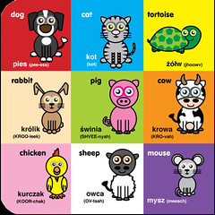 Icklelingo Book 1 - Inner - animals (Icklelingo) Tags: 1 book englishpolish icklelingo