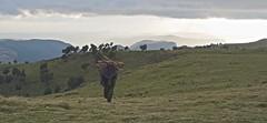Simiens Mountains in Ethiopia
