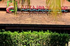 Taman Botani Putrajaya (phalinn) Tags: bridge trees people lake flower green nature fauna architecture kids canon garden botanical eos video pond flora outdoor malaysia seafood putrajaya canopy taman pavillion kolam alam prewedding tasik videography wilayah moroccon persekutuan 600d botani 400d