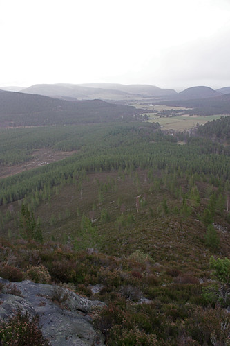 Steep eastern slope of Creag Ghiubhais