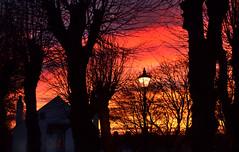 morning light (pete ware) Tags: morning trees winter window sunrise streetlamp silhouettes pete ware vicarage gillinghamgreen nikond7000 peteware