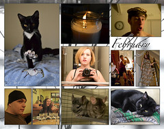 February (Mel Staten) Tags: friends animals collage cat candle calendar photograph chinchillas february 2011