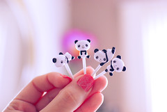 pandinhas  (Natlia Viana) Tags: cute miniature panda amizade miniatura ursinho pandinha natliaviana